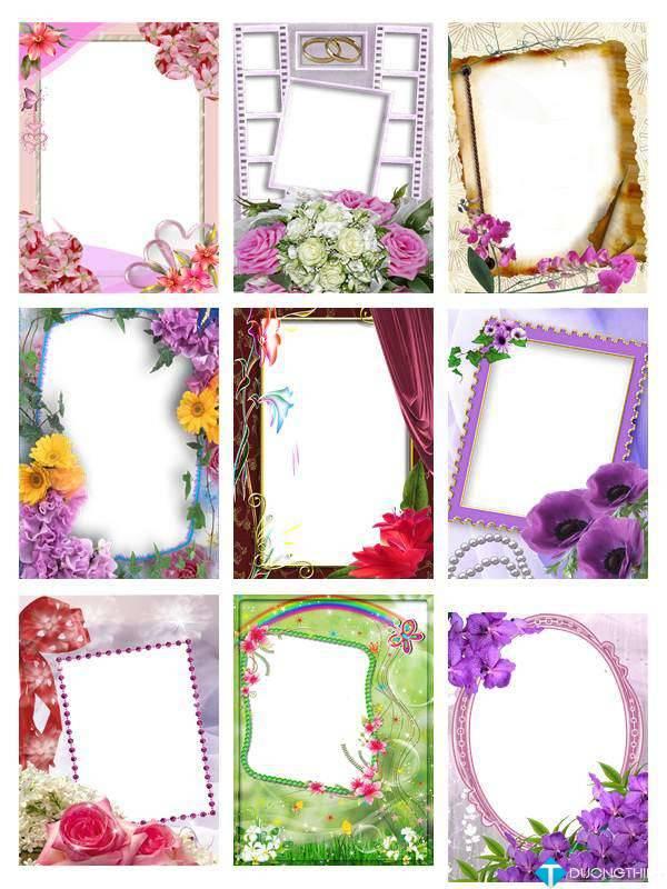 PNG Frames Collection Part 10 – Bộ sưu tập khung ảnh khổng lồ