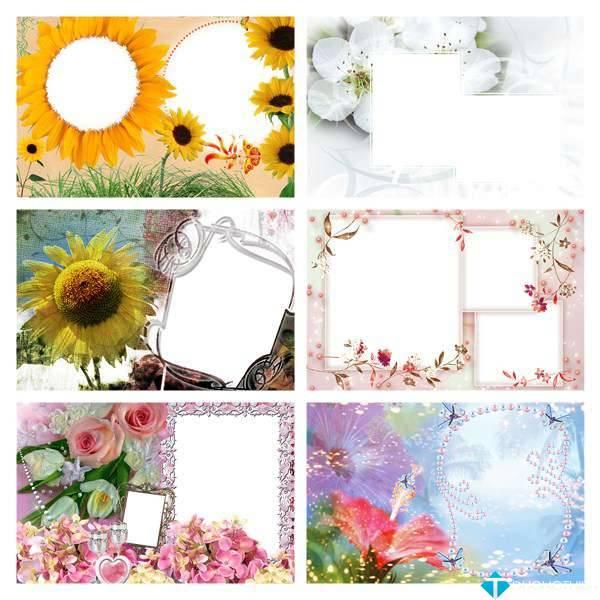PNG Frames Collection Part 7 – Bộ sưu tập khung ảnh khổng lồ