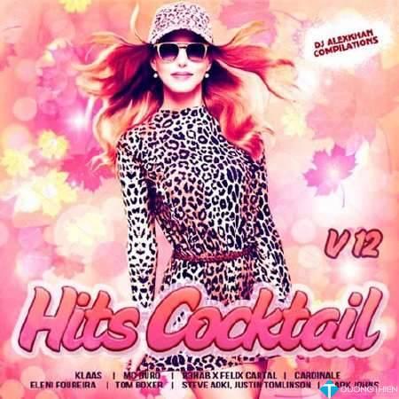 Hits Cocktail Vol.12 (2017) [320kbps]