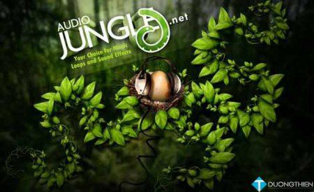 AudioJungle Bundle Vol. 1