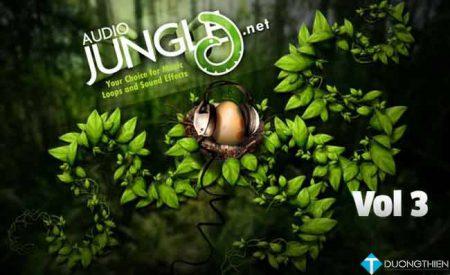 AudioJungle Bundle Vol. 3