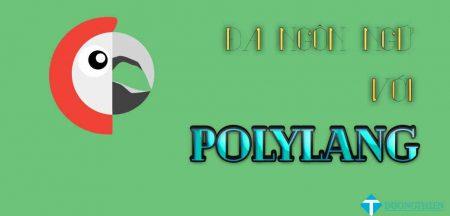 Hướng dẫn làm website WP đa ngôn ngữ với Polylang